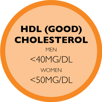 HDL (GOOD) CHOLESTEROL- MEN <40MG/DL, WOMEN <50MG/DL